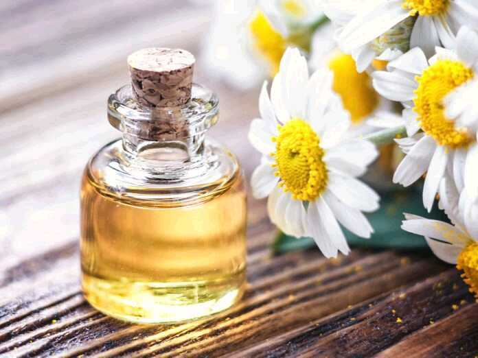 Chamomile Oil Effective Against Herpes