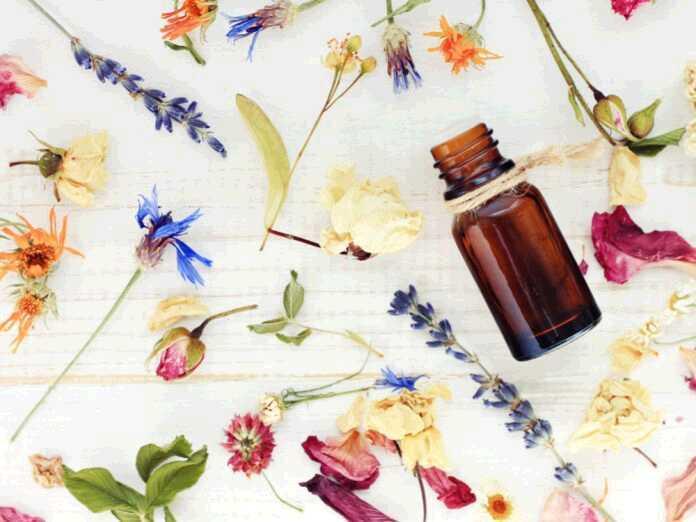 best essential oils for UTIs