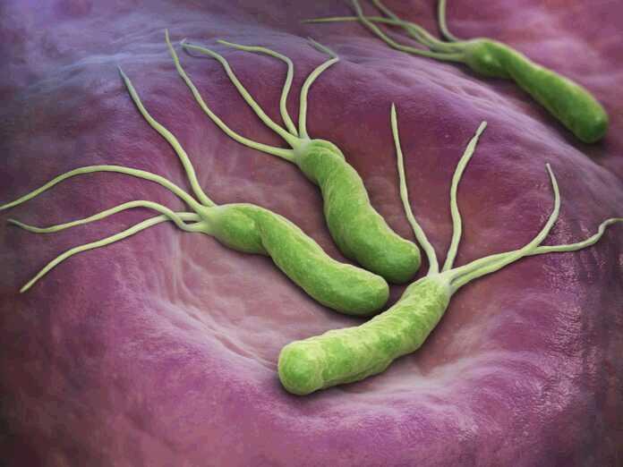 most dangerous drug-resistant bacteria