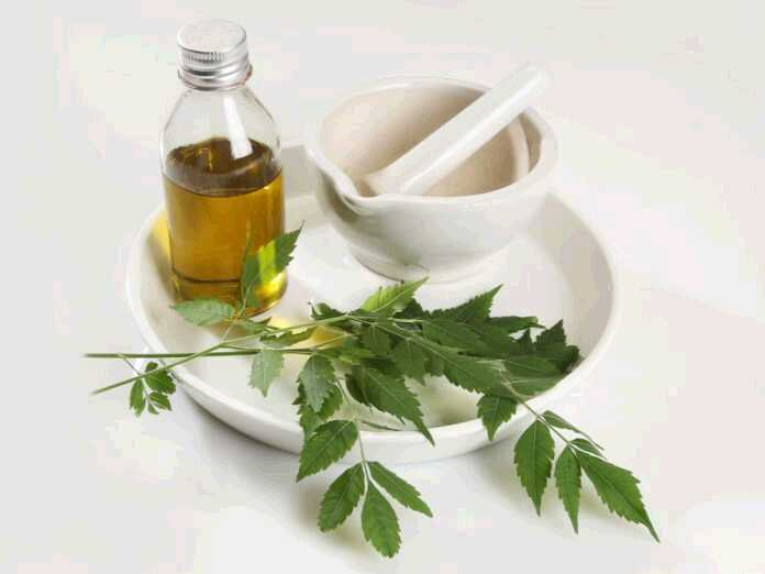 natural remedies for boils